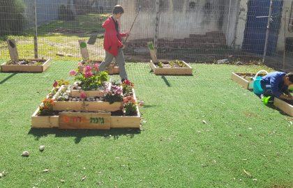 גינת פרחים בגננו- הילדים שתלו בעצמם  בהנאה מרובה שתלים שהפכו לגינה של ממש.