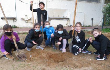 שיעור מדעים בכיתה ג' עם החקלאים שלנו .הכרנו סוגי קרקעות ושתלנו זרעים.